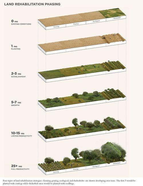 Land Rehabilitation Phasing