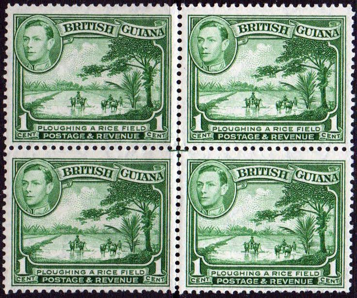 British Guiana 1938 King George VI SG 308a Ploughing Rice Field Fine Mint Block of 4 SG 308a Scott 230 Perf 12 5 Condition Fine MNH Only one post