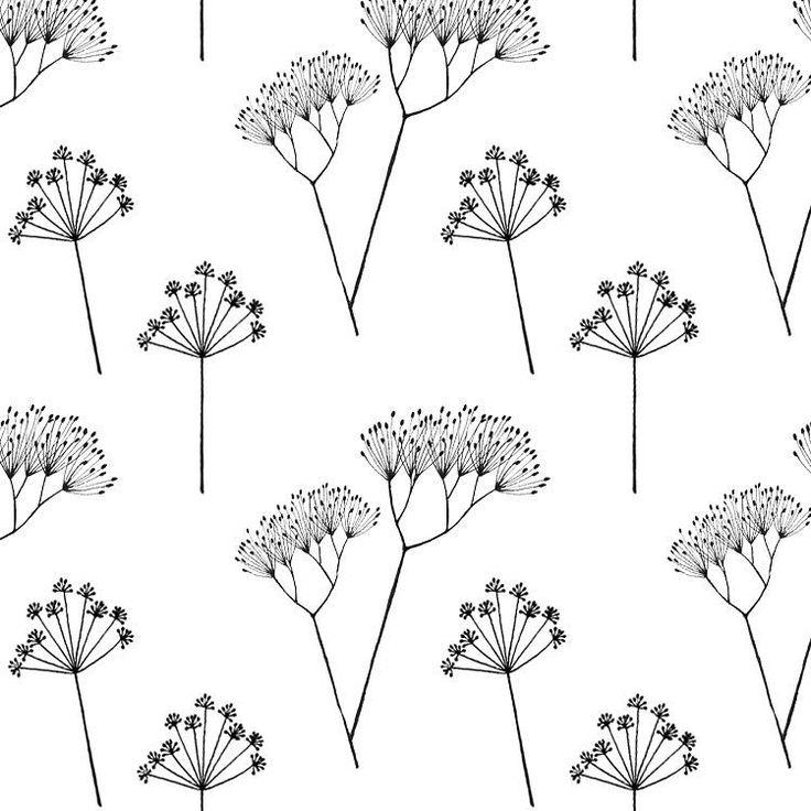 Pattern. #illustration #sketch #fineliner #parsley #coriander #seeds #botanical