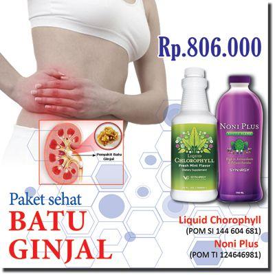 www.detoxgaleri.com/dudik - Paket Sehat Batu Ginjal