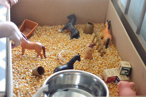 A DIY corn sensory bin - an easy and educational indoor activity for those cooler fall days ahead!