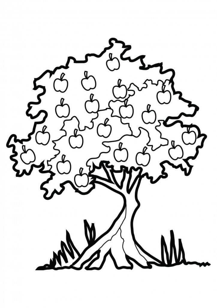 Johnny Appleseed Coloring Pages Best Coloring Pages For Kids Tree Coloring Page Flower Coloring Pages Fruit Coloring Pages