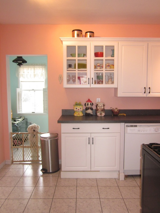 paint color for kitchen with white cabinets 1000 images about paint therapy on house 9676