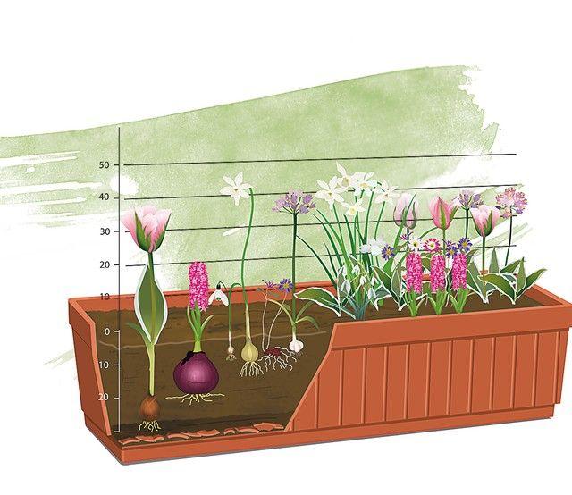 les 52 meilleures images propos de pot es fleuries sur pinterest jardinage plantes et terrasses. Black Bedroom Furniture Sets. Home Design Ideas