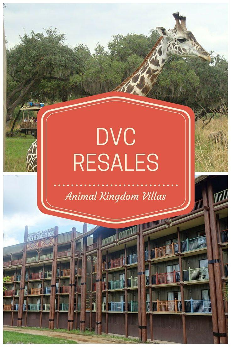 19 best animal kingdom villas dvc images on pinterest villas