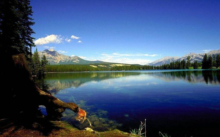 Mavinin ve Yeşilin Etkileşimi Göl Manzarası