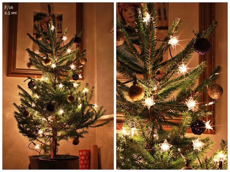 how to photograph your christmas tree how to get twinkle bursts of light set your aperture. Black Bedroom Furniture Sets. Home Design Ideas