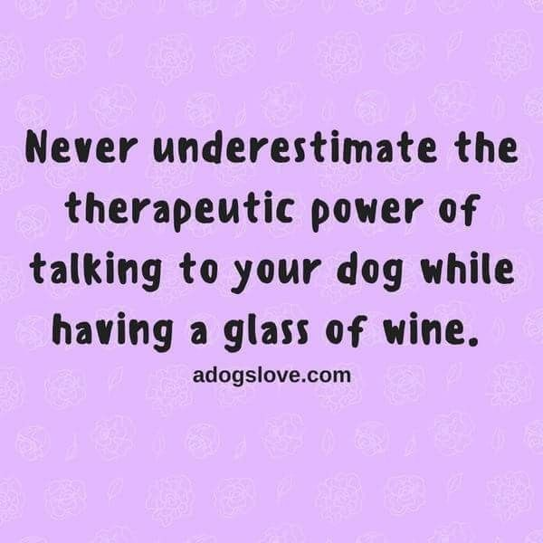 597 best doggie truths and sayings images on Pinterest Doggies - proudest accomplishment