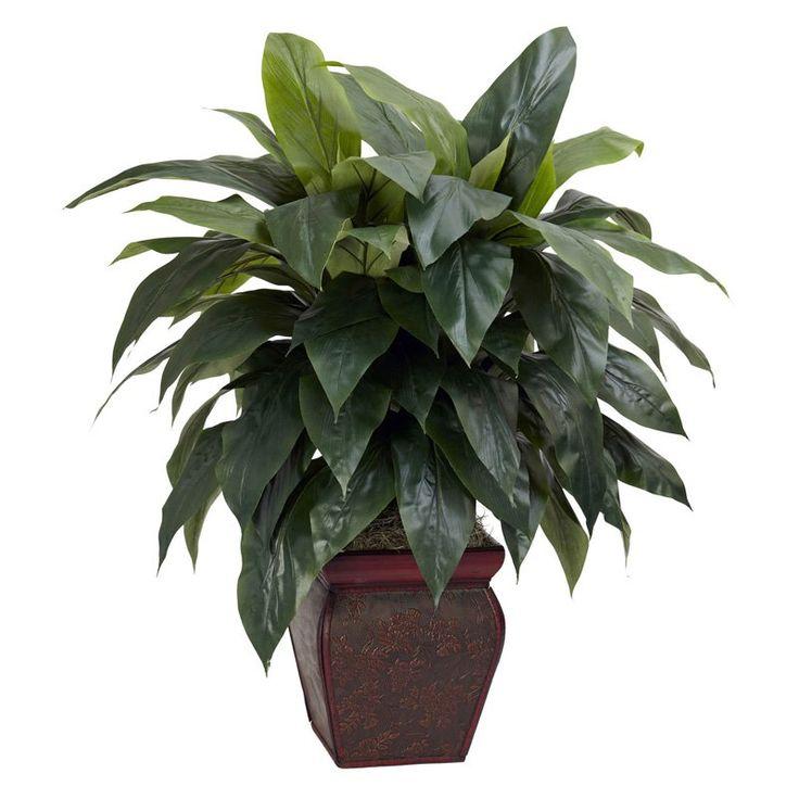 Cordyline with Decorative Vase Silk Plant | from hayneedle.com