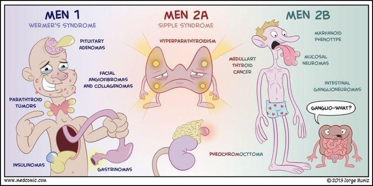 Wermer's Syndrome