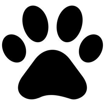 Online Hundetraining & Hundeerziehung