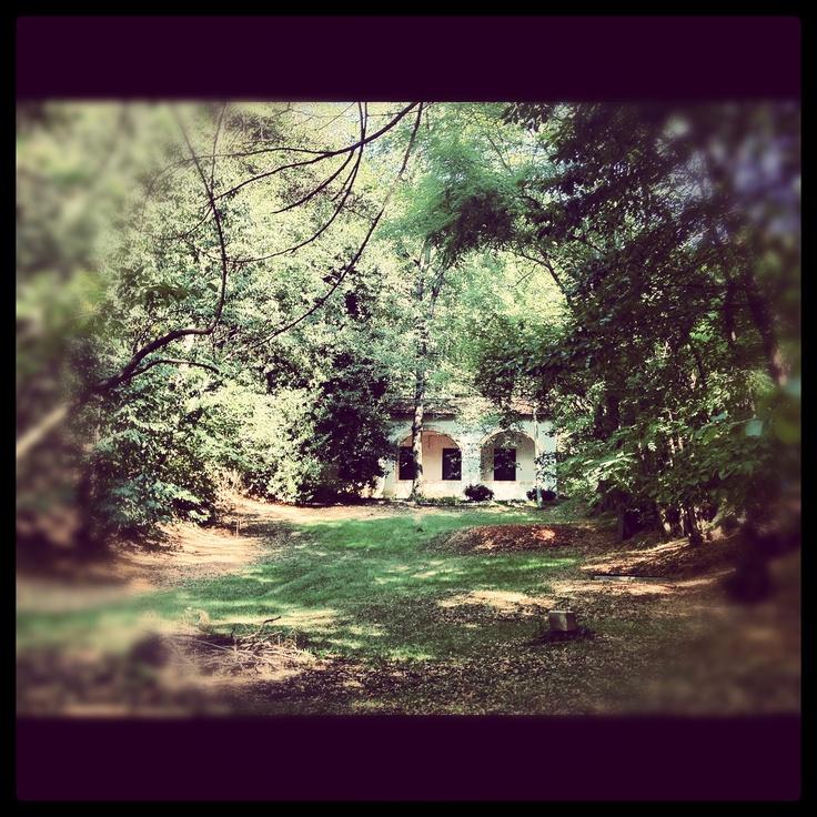 Casa nel bosco..