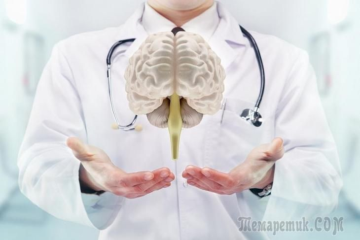 Мозг человека — сложная и хрупкая структура, которую так легко повредить при несоблюдении несложных правил. Мы перечисляем самые вредные привычки, которые ведут к повреждению тканей мозга. В молодом в...