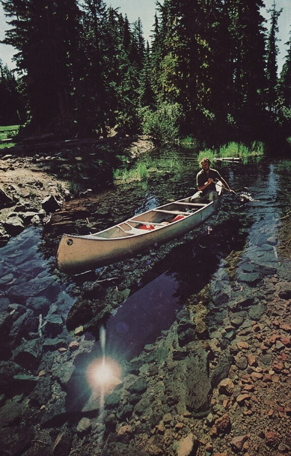 Sunny warm afternoon canoeing, fun adventures.