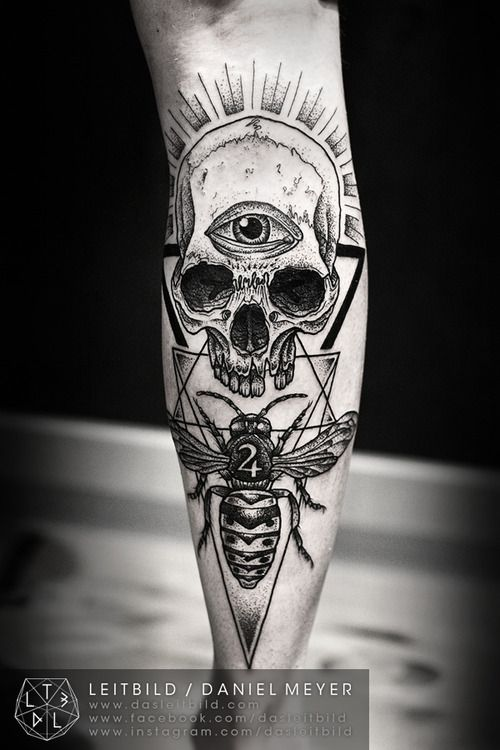 Wasp Skull by Daniel Meyer via...
