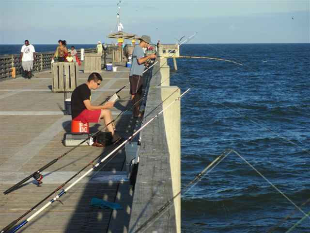 543 best surf and piers images on pinterest fishing tips for Pier fishing tips