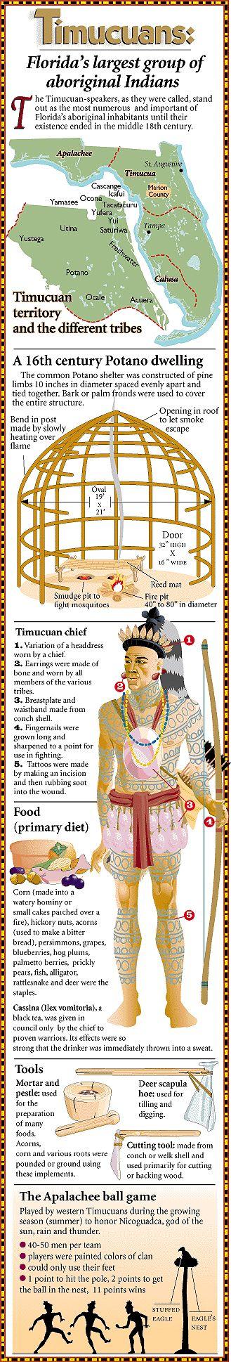 Timucua Indians