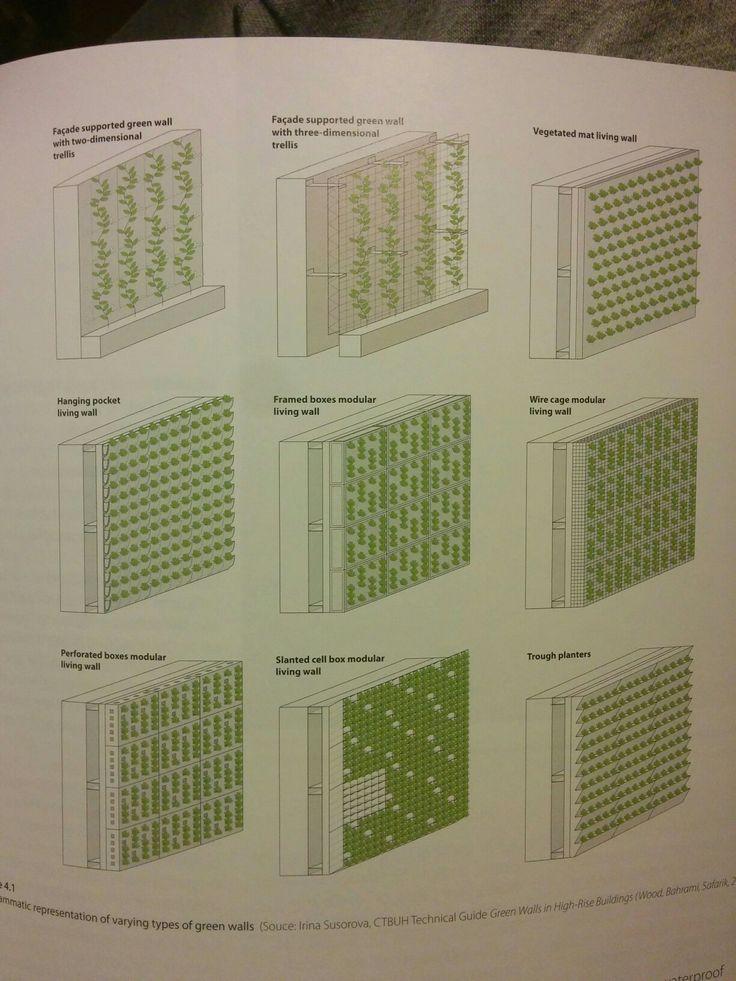 Typer av gröna väggar