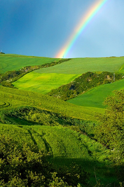 Rainbow over green fields of wheat in Tuscany, Italy.