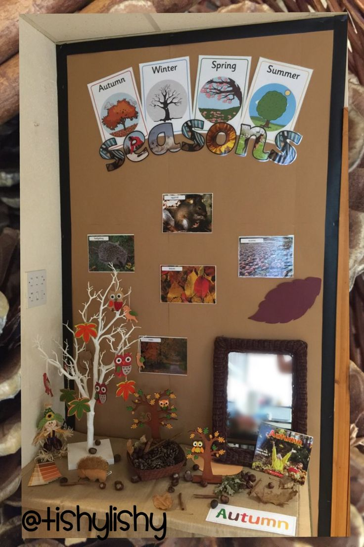 Fall decorations for classroom - Autumn Display In My Fs2 Class