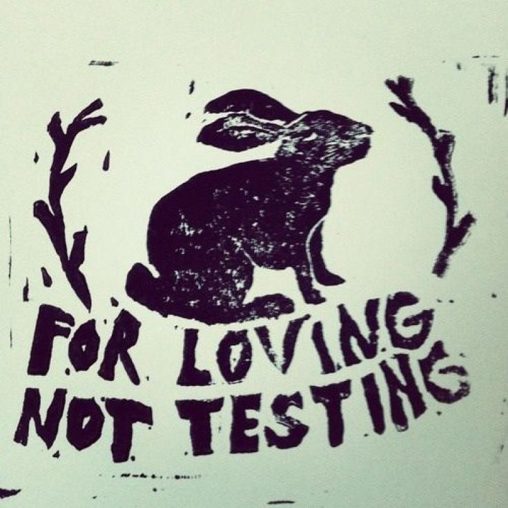 animal rights testing Animals used for experimentation animals used for entertainment alternatives to animal testing why should animals have rights read more.