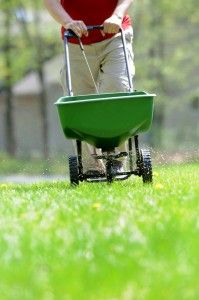 Tips on what to consider when planting a great yard: Seed or sod? What type of seed? How to prepare the ground? Sowing the seed, watering, mowing, fertilizing and more. #grass #landscaping #lawn