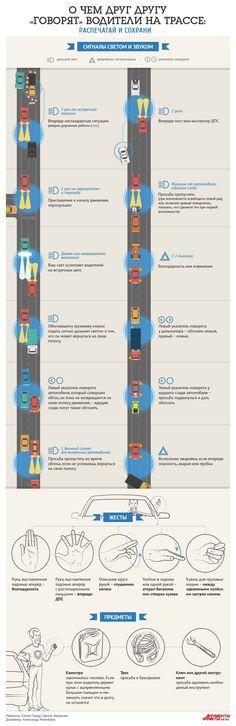 О чём друг другу «говорят» водители на трассе? | Инфографика | Аргументы и Факты