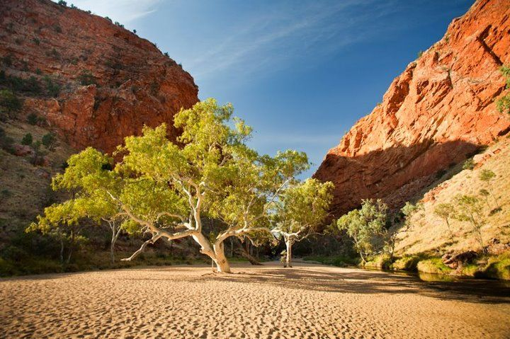 Simpson's Gap - west of Alice Springs, Northern Territory - Australia - a dry riverbed....