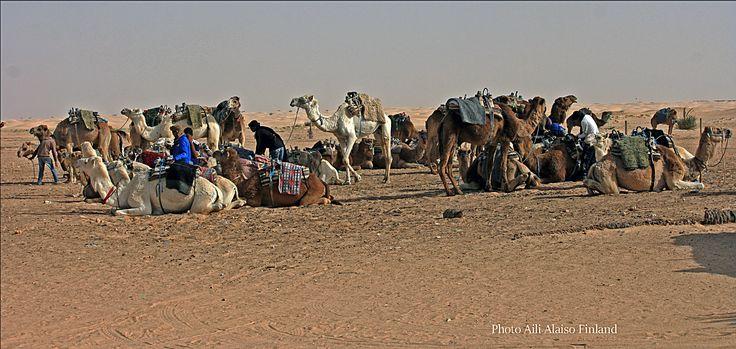 On departure, Sahara Tunisia , Africa by Aili Alaiso