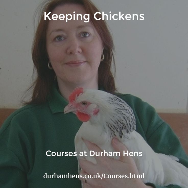 Courses at Durham Hens