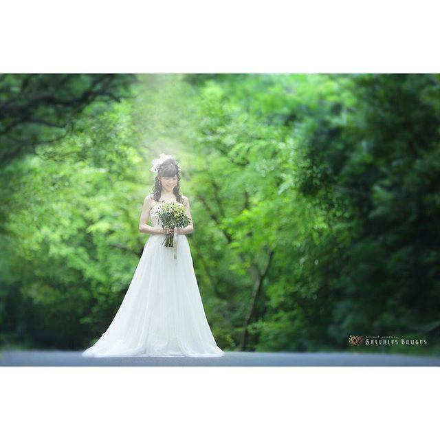 【gb_ubuyashiki】さんのInstagramをピンしています。 《名古屋市内でもこんな空気感で撮影す . ることは可能! . . #ブライダル#gb#名古屋前撮り#スタジオ前撮り#ロケーション前撮り#photo#森林#写真好きな人と繋がりたい#ブラス#笑顔#日本中の花嫁さんと繋がりたい#ブライダルヘア#花嫁#卒花#結婚準備#ヘアメイク#プレ花嫁#結婚式#撮影#ウェディングニュース#galeriesbruges#ギャルリーブルージュ#photovelcafe#フォトベルカフェ#前撮り#marry花嫁図鑑#2017花嫁#ルージュブラン #2017春婚》