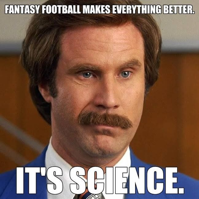 25 Best Ideas About Fantasy Football Meme On Pinterest