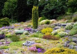 Image result for golden acre park