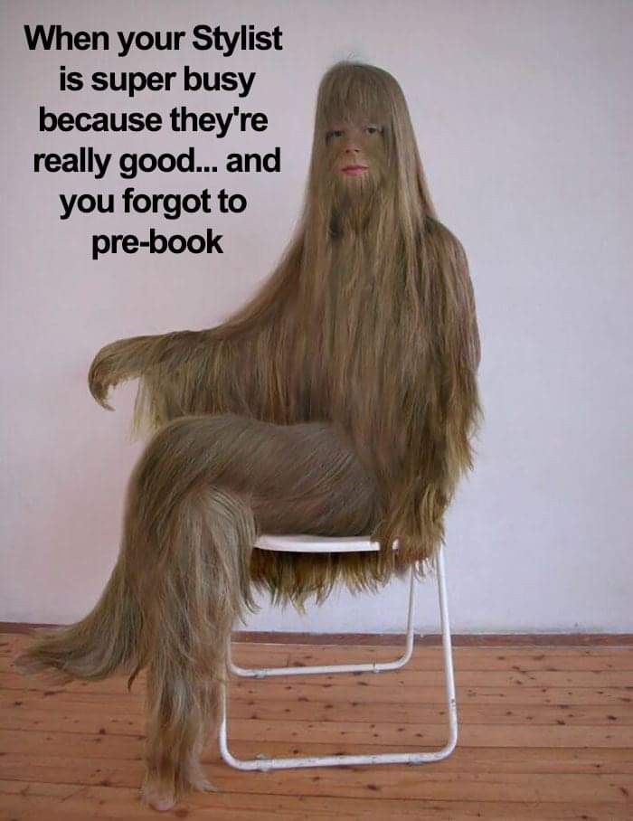 Pin By Courtney Dickson On Funny Hair Quotes Funny Hairstylist Memes Hairstylist Humor