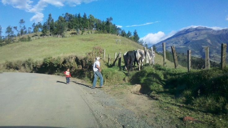 El Campesino de mi región....Nariño - Colombia