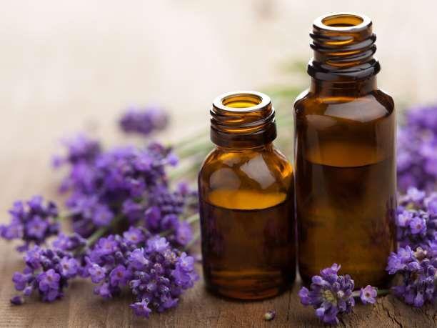 Συνταγές σπιτικών, φυσικών εντομοαπωθητικών με αιθέρια έλαια - Εναλλακτική Δράση