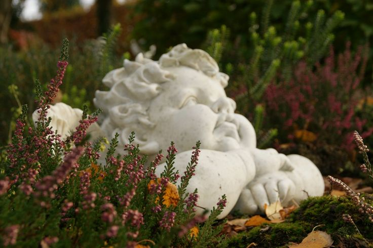 dekoracja ogrodowa, w ogrodzie cienia rozmarzony anioł  Ogrody Hortulus w Dobrzycy