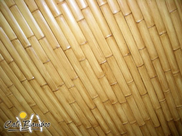 60 Best Bamboo House Images On Pinterest Bamboo House
