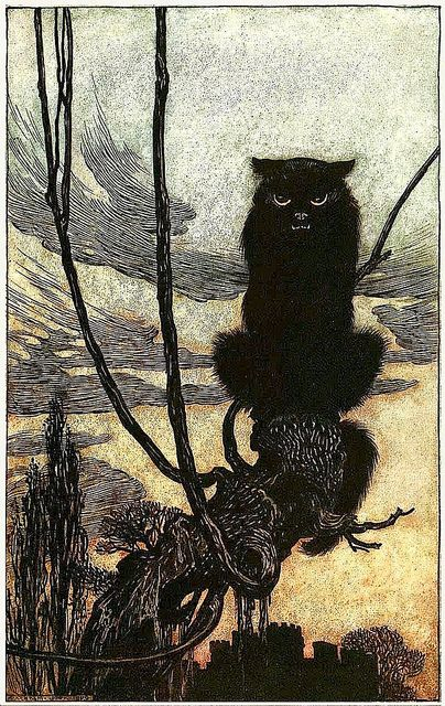 "Black Cat. From ""Grimm's Fairy Tales,"" illustrated by Arthur Rackham, London: William Heineman, Ltd., 1909."