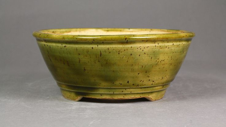 "Forest Green 6.25"" Round Bonsai Pot by Ashley Keller"