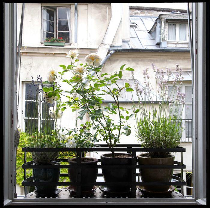 #Jardin_Suspendu #Rebord_Fenetre #Balcon #Aurey