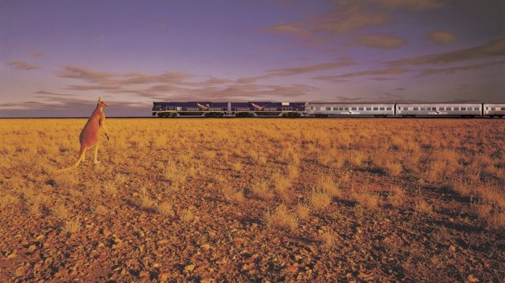 10 things in Australia you can only experience by train