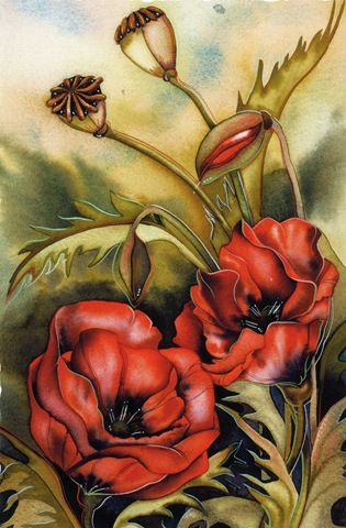 Poppies by Jody Bergsma