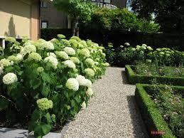 Afbeeldingsresultaat voor kleine engelse tuinen