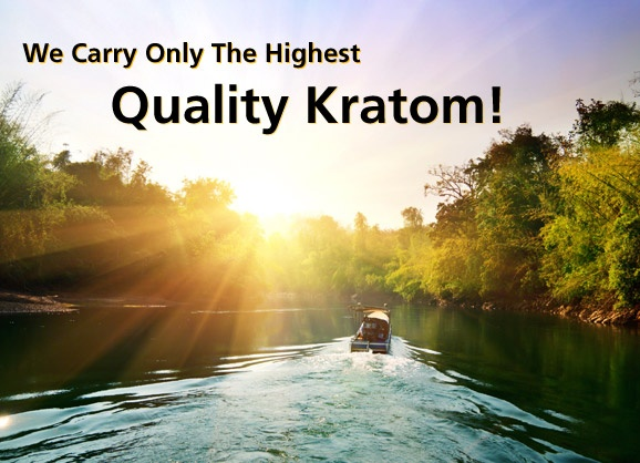 Kratom is a traditional southeast Asian tree used by locals for many purposes.