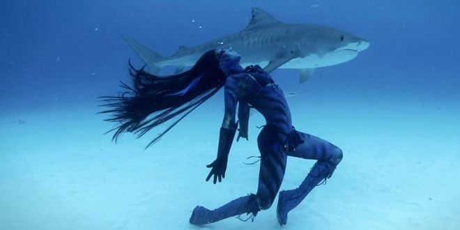 """""""Tears of a Mermaid"""" is a documentary filmed in the Bahamas. The purpose of the project is to show that these creatures don't deserve the """"man-eating"""" reputation that they have. What are your thoughts? Are they doing a good thing or are they being wreckless? Are they humanizing these animals a little too much or do people need to reframe their thinking about sharks? This is a very controversial subject with a variety of opinions – I'd love to hear yours!"""