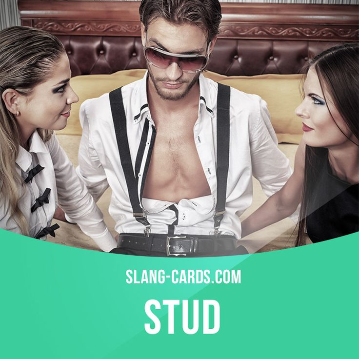 """Stud"" means an attractive man thought to be very sexually active or promiscuous. Example: That police officer is a stud! I'd let him handcuff me any day! Get our apps for learning English: http://learzing.com"