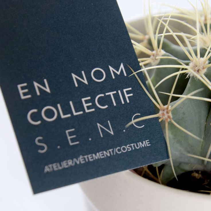 EN NOM COLLECTIF S.E.N.C on Behance #branding #design #graphicdesign #businesscard #cactus #logo #doncarlomtl #clother