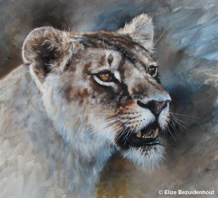 Lioness by Elize Bezuidenhout