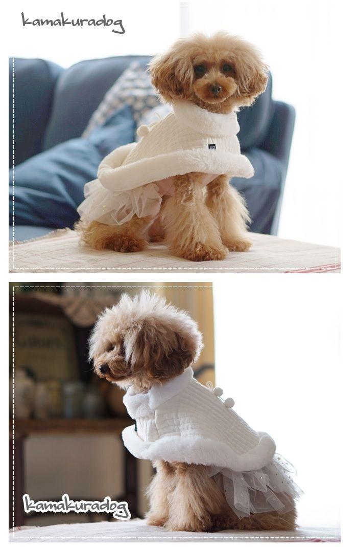 楽天市場 犬の服 ショートケープ 鎌倉dog2号店 犬のセーター 子犬の服 犬の服
